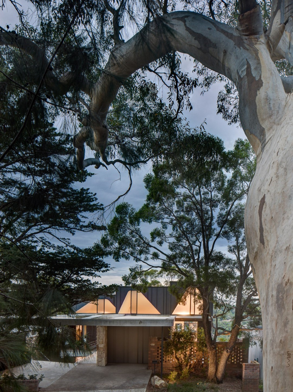 David Boyle Architect - Houses